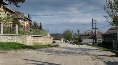 Photo: 2010.04.22