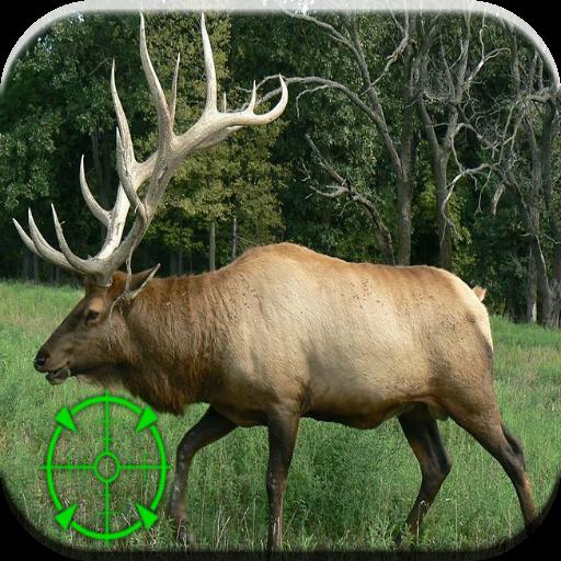 엘크 사냥 통화 運動 App LOGO-硬是要APP