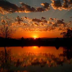 Radiant Evening by Sandra Millsap - Landscapes Waterscapes ( water, radiant, reflection, sky, sunset, landscape, pond, evening, rays )
