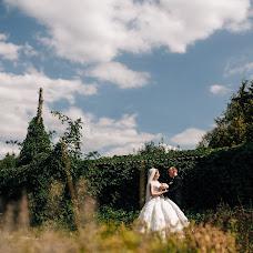 Wedding photographer Alena Franc (Franz). Photo of 17.01.2018