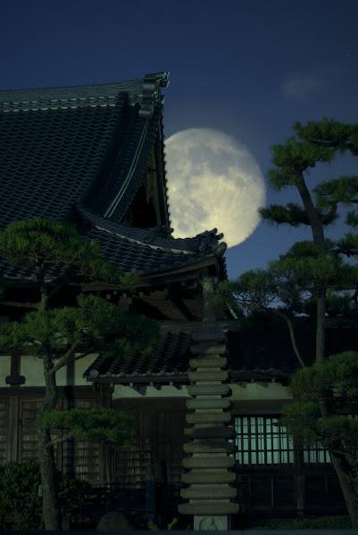 Photo: #217 - Moon over Zennoji