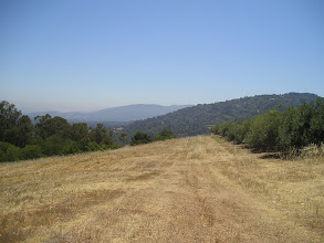 Photo: 2009 View east from Paul Masson winery. Saratoga, CA. Inspiration for next painting.