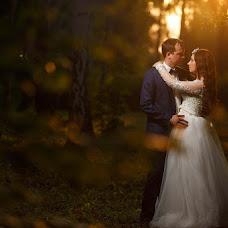 Wedding photographer Sergey Shtefano (seregey). Photo of 02.11.2017