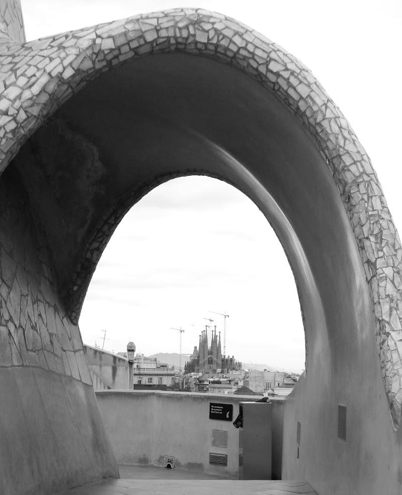 View of the Sagrada Familia di viola94