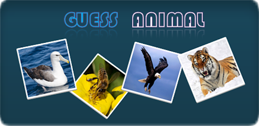 Guess Animal for PC
