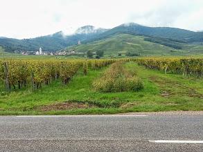 Photo: Paysage vers Bennwihr(Haut-Rhin)