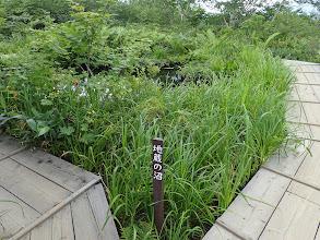 地蔵の沼1