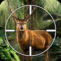 Deer, Bear, Tiger Hunting 2016 icon