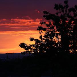 by Sandra Lee - Landscapes Sunsets & Sunrises