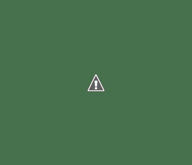 япония лейтенант полицции