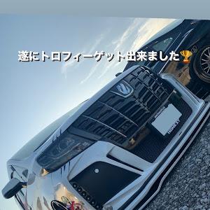 アルファード AGH30W Cパッケージのカスタム事例画像 ☆セル☆ (第2形態)さんの2020年10月25日21:27の投稿
