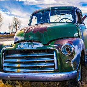 Green Machine by Michelle Bergeson - Transportation Automobiles ( truck, green, rust, abandoned, decay,  )