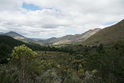 Grüne Berge nördlich des Prince Alfred's Passes