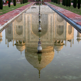 Royal reflection by Arup Chowdhury - Landscapes Travel ( pwcreflections-dq )