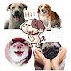 Download Dogs stickers WAStickerApps For PC Windows and Mac