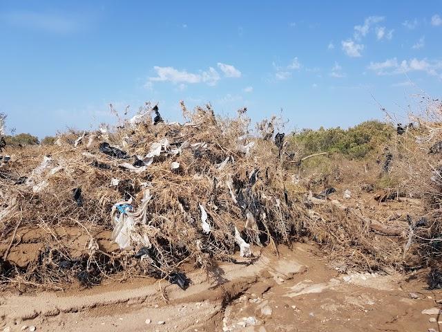 Los plásticos arrastrados al mar son una amenaza.
