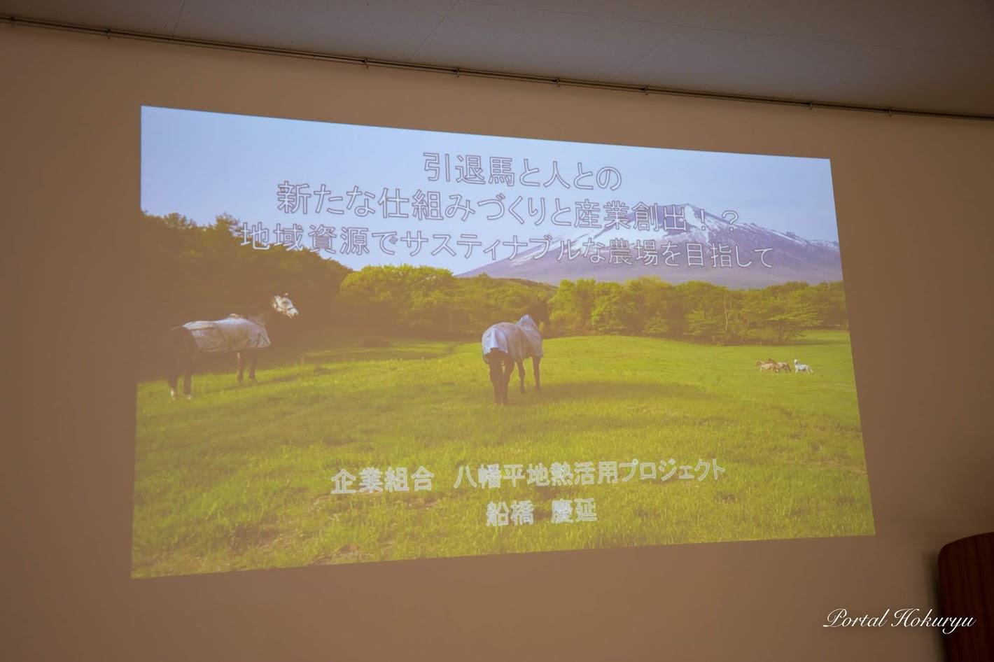 八幡平地熱活用プロジェクト