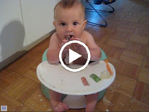 Video: Henry eating dinner-- Chloe wants that bone!