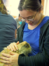 Photo: Jumanji, who's gotten a lot of medical help thanks to The Rabbit Haven