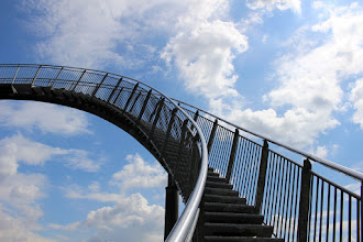 Photo: Tiger and Turtle