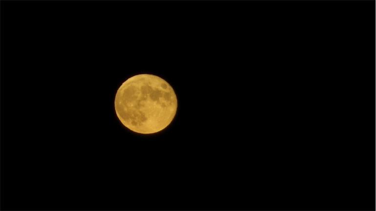Moonrise 8th 2.jpg