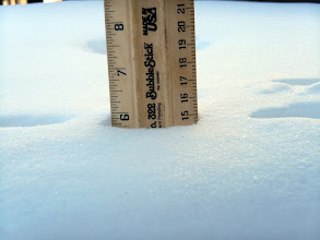 """Photo: About 6"""" of snow fell on 1/21/14."""
