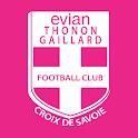 Evian Thonon Gaillard F.C.