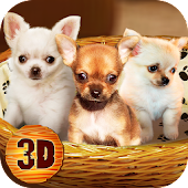Chihuahua Dog Simulator 3D