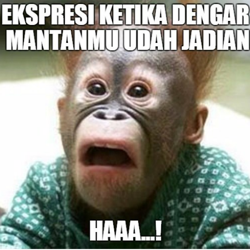 玩免費遊戲APP|下載Meme Creator for Whatsapp app不用錢|硬是要APP