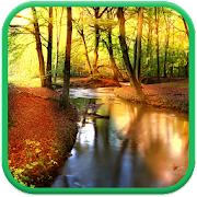 autumn forest live wallpaper apps on google play