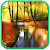 Autumn Forest Live Wallpaper file APK for Gaming PC/PS3/PS4 Smart TV