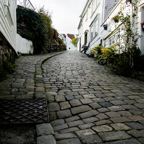 Cobbles up the hill by Alan Cline - City,  Street & Park  Neighborhoods ( hill, cobblestone, norway, homes, neighborhood )