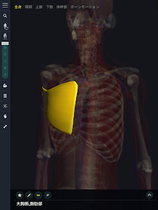 3D運動解剖学 teamLabBodyのおすすめ画像3