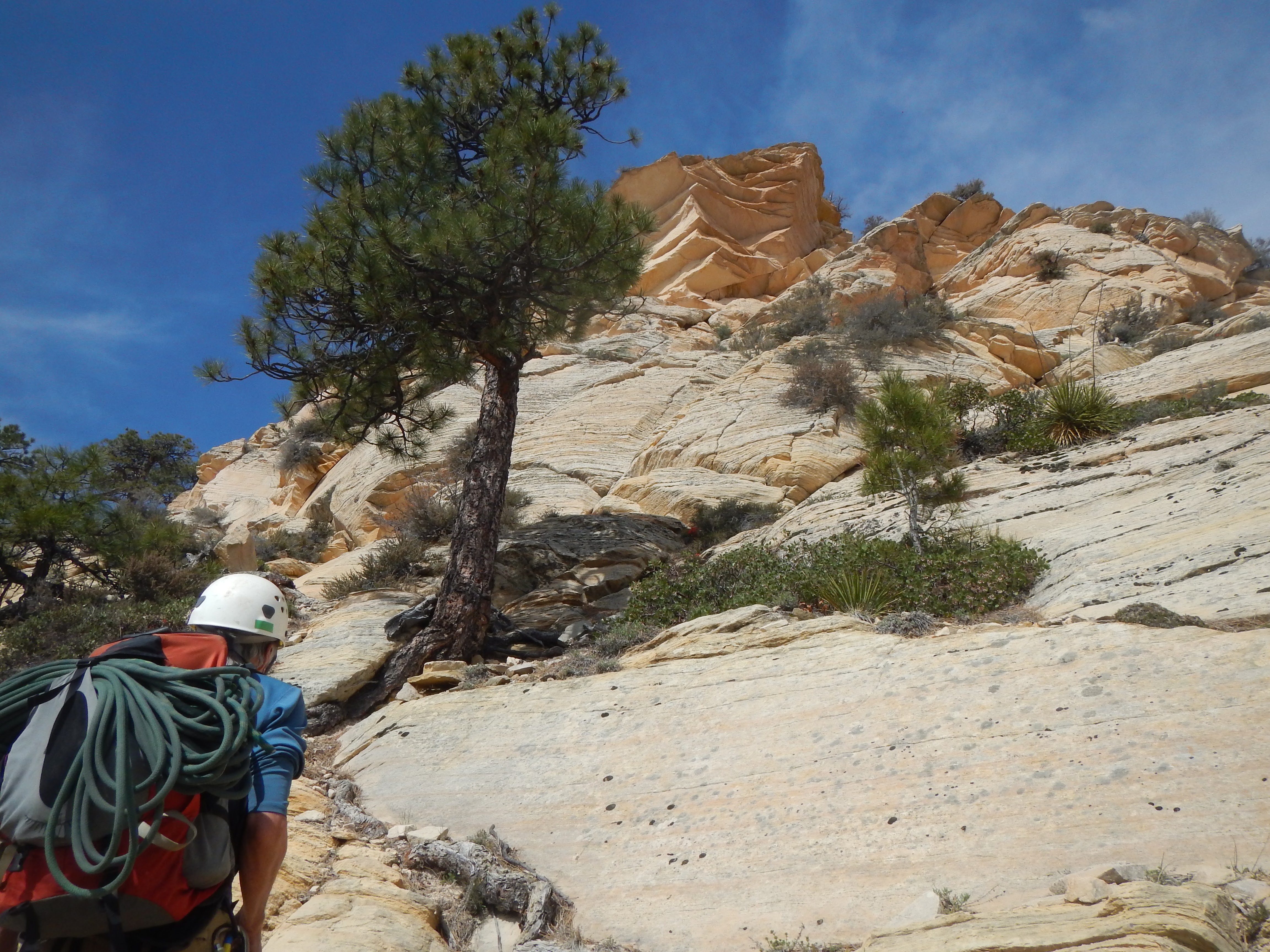 Photo: Rick carries the rope up the last bit of scrambling