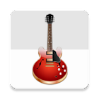 Guitar Chords (Pro) icon