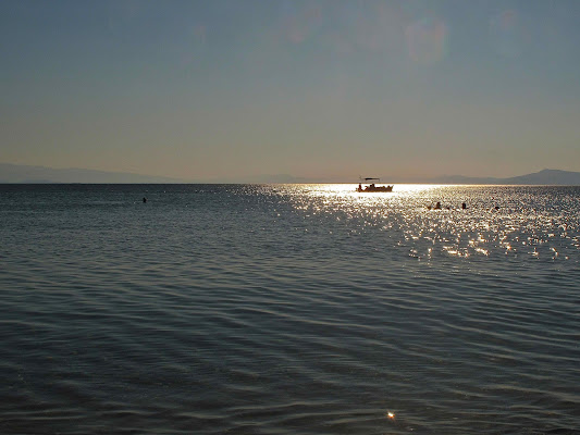 Il mare. Un sogno. di sangiopanza