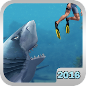 Shark Simulation 2016