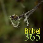 365 Bijbel icon