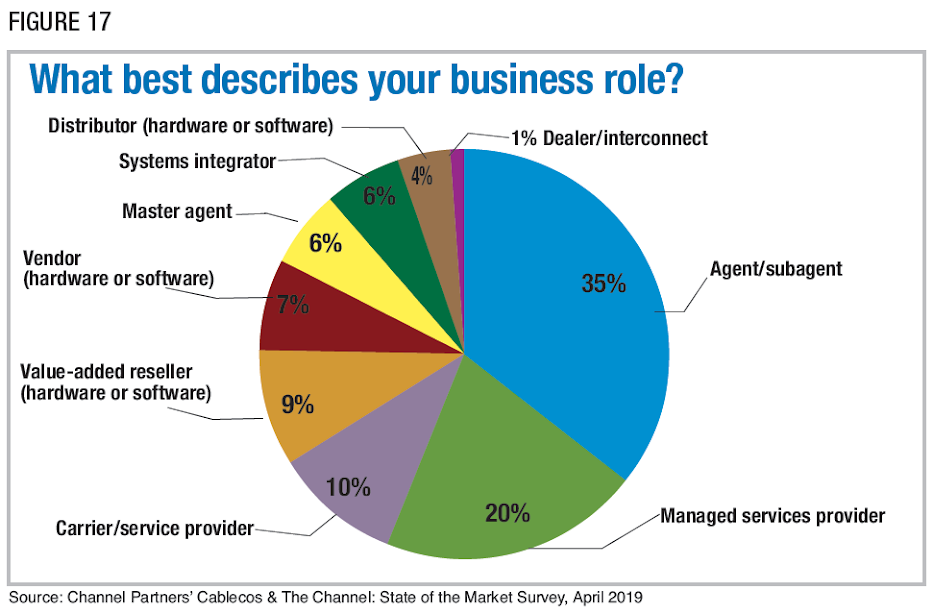 Figure 17: What best describes your business role? Source: Channel Partners' Cablecos & The Channel: State of the Market Survey, April 2019