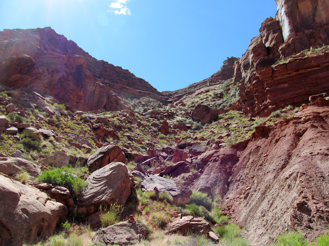 View up the Angel Trail
