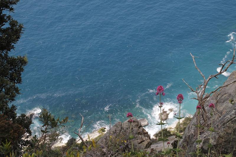 a picco sul mare blu di Annalis©Photo