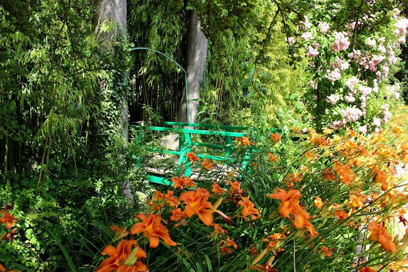 I fiori di Monet di annabus58