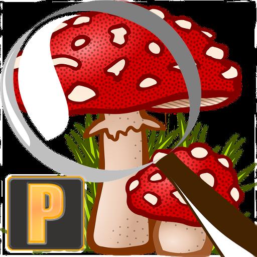 Mushroom Tracker Premium