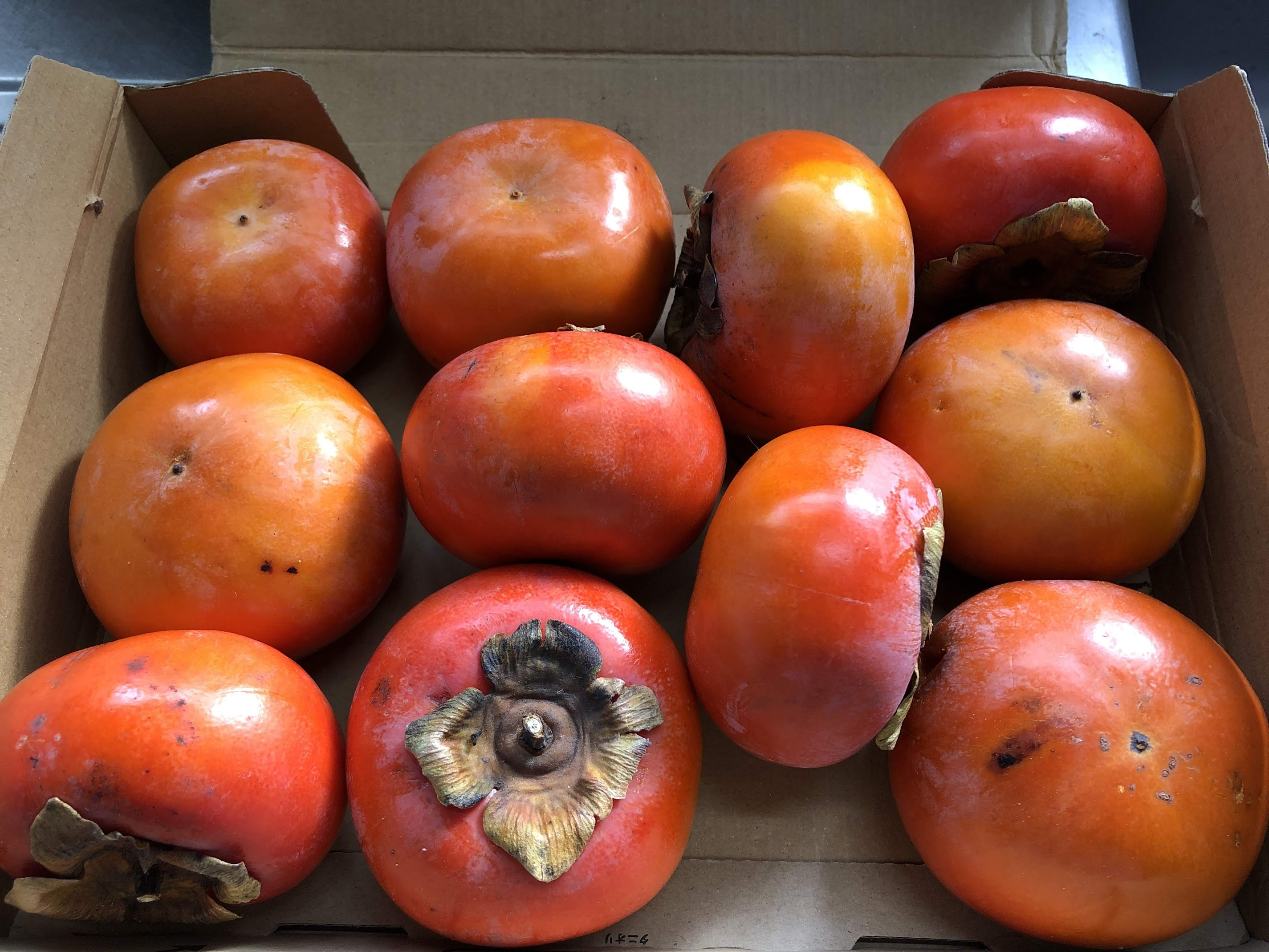 無農薬の柿