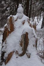 Photo: Niekto si tu ešte pred snežením postavil snehuliačika