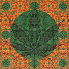 Ganja by Frank Herner - Illustration Abstract & Patterns ( abstract, abstract art, weed, fractal, fractals )
