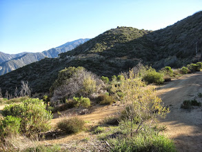 Photo: View northeast from the hairpin starting the second leg of the first long switchback