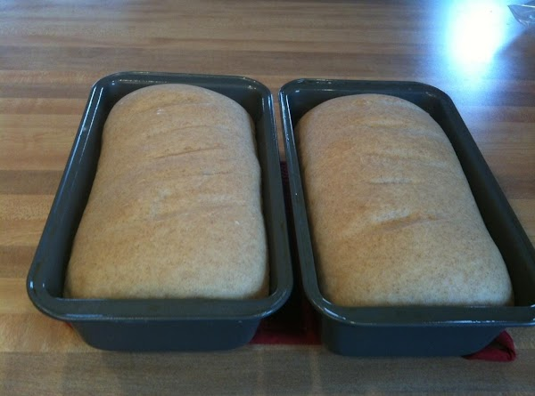 "Set aside to rise until it's about 1"" over the sides of the pan,..."