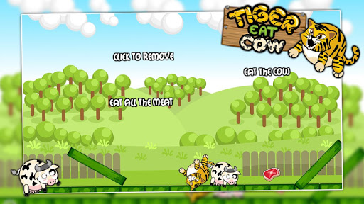 Little tiger eat cow