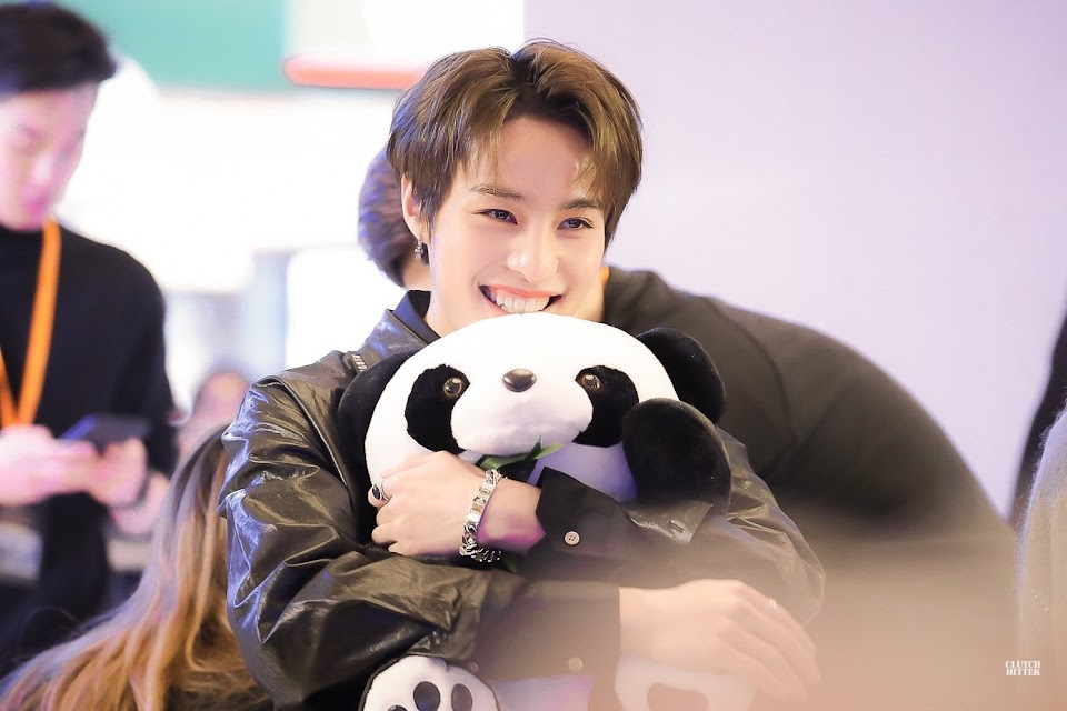 wayv yangyang plush stuffed animal